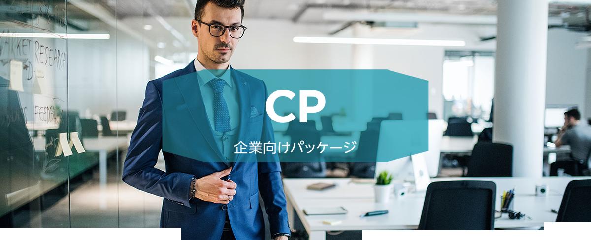 クイックデザインサービス 企業向けホームページデザイン制作パッケージ CP